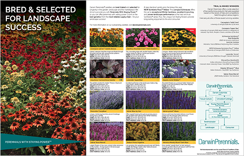 Download Our Landscape Brochure Here