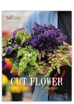 Ball Seed Cut Flower Guide
